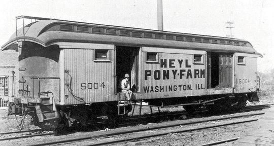 Ein Express-Wagen für  den Transport von Pferden, hier im Speziellen für Ponys der Heyl Pony Farm