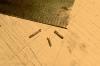 So entehen kleine Bolzen mit einem Sechskantkopf aus nut-bolt-washer-Bolzen (NBW) - wobei diese ziemlich genau eine Größe von 0,8 Millimeter haben.
