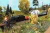 Und natürlich ist die Lok mit meinem Xtra-train unterwegs! Sieht allerdings sehr nach einer Nebenstrecke vor, einer branch-line.