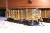 Eine von drei Gondolas, die unbedingt aufgesetzte Eckbeschläge bekommen sollte, die bisher nur als Konturen in die Bordwände eingeätzt waren.