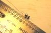 Und nun die Kontrolle der Maßhaltigkeit. 5 mm hoch - und damit doppelt so groß wie es für ein HO-Modell sein sollte. Aber kleiner ist's nicht zu schaffen, leider!