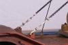 Ladungsfixierung der Schiffsschraube, ein Ausschnitt.